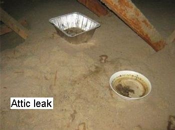 Attic Leak